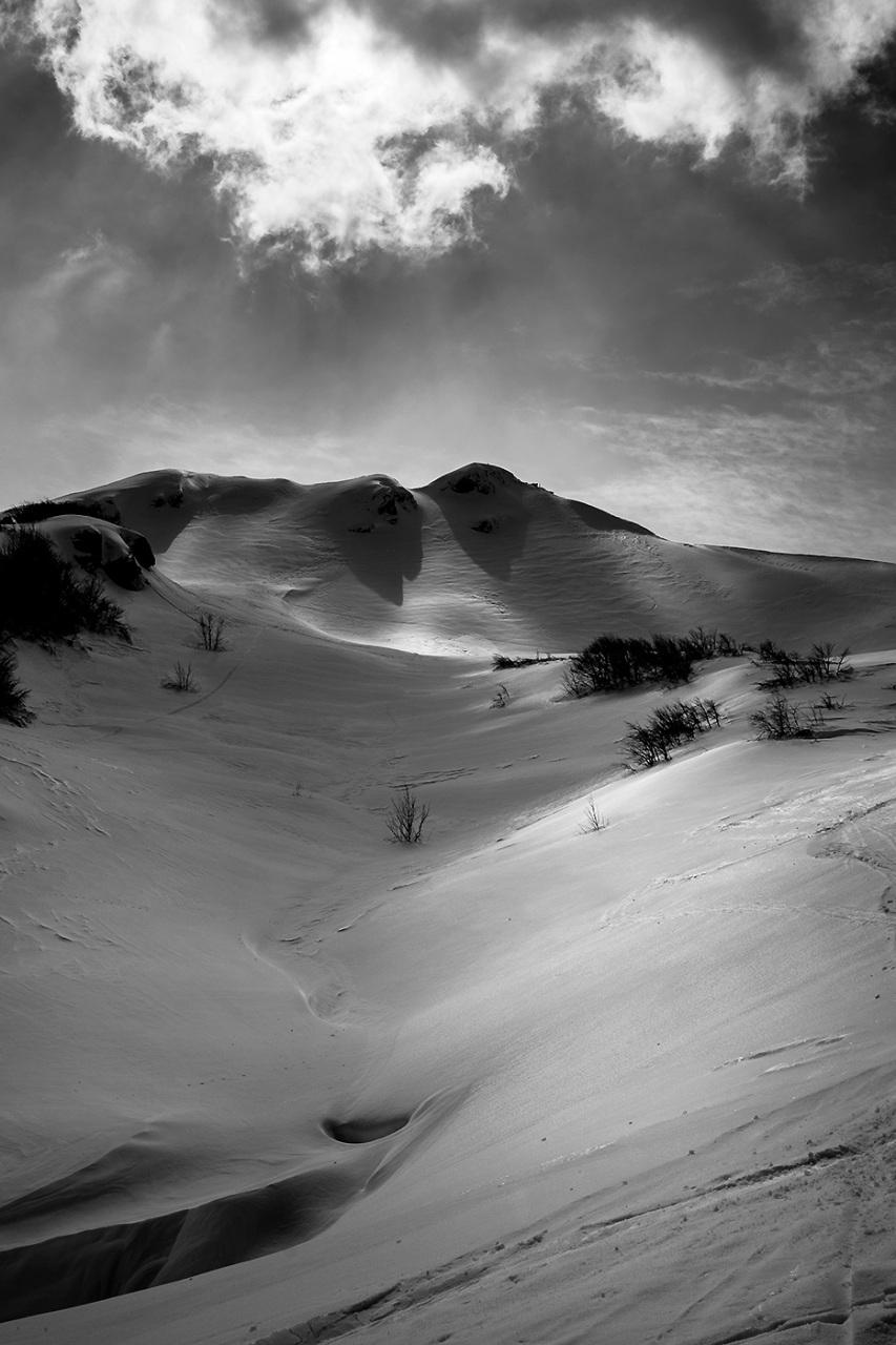 Monte Aquilotto - Appennino Parmense - Italy