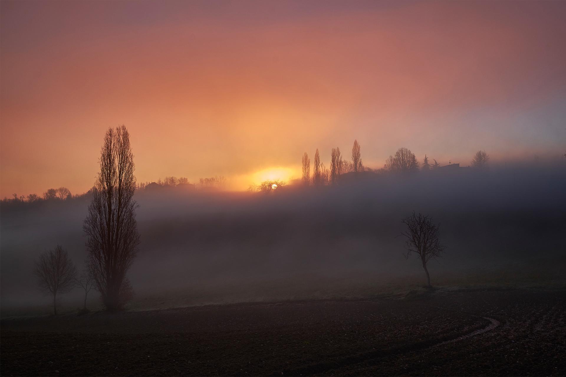Nebbia tra le colline