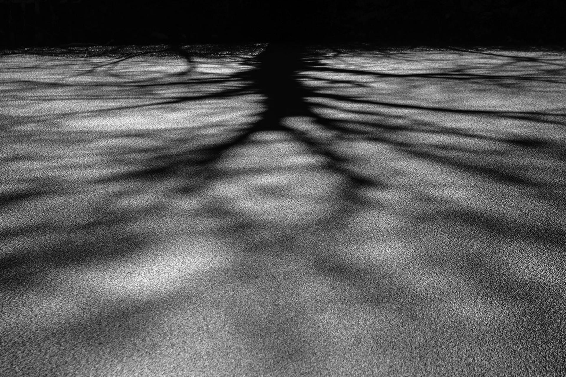 studio-fotografico-parma-ombre