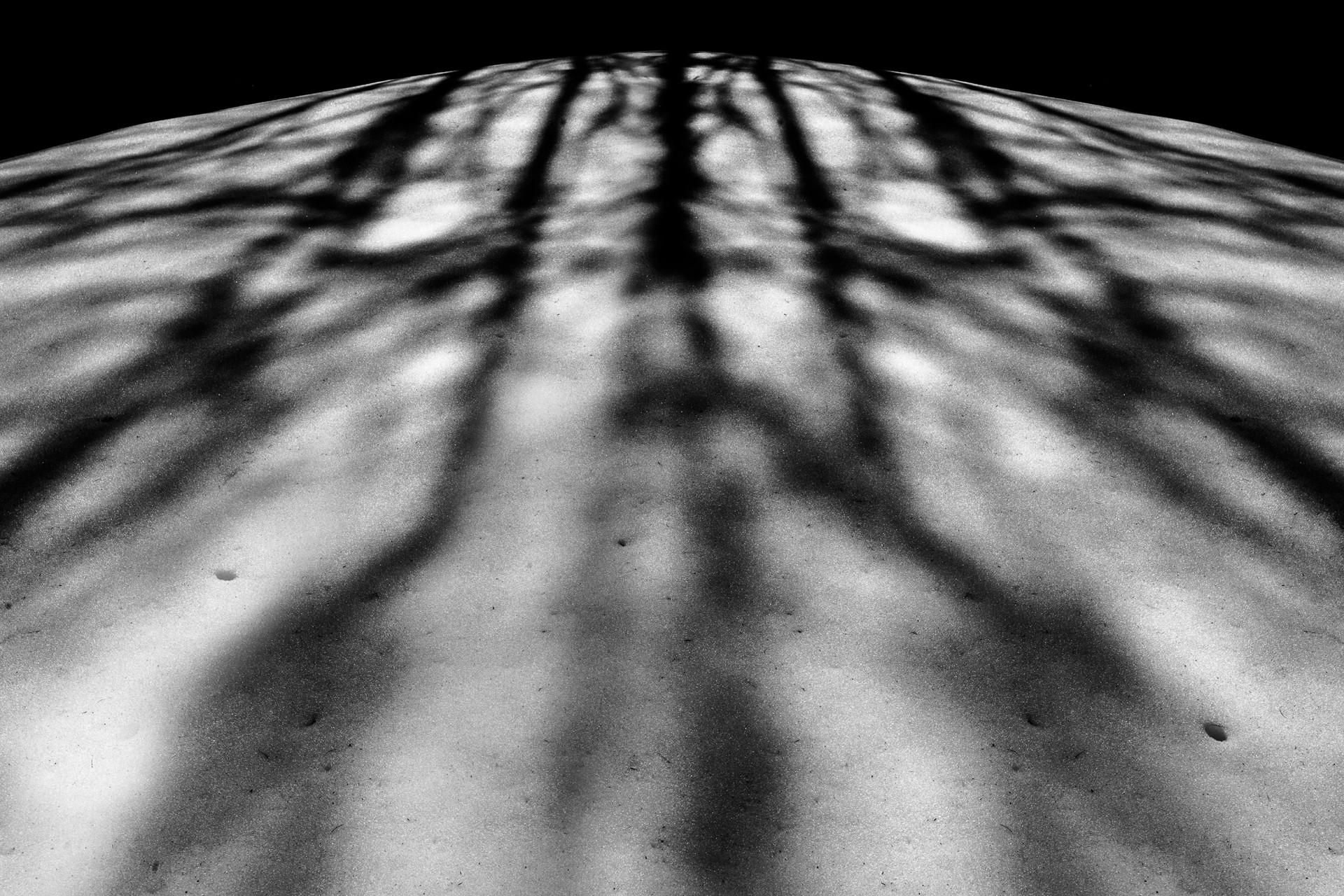 studio-fotografico-parma-ombre-neve
