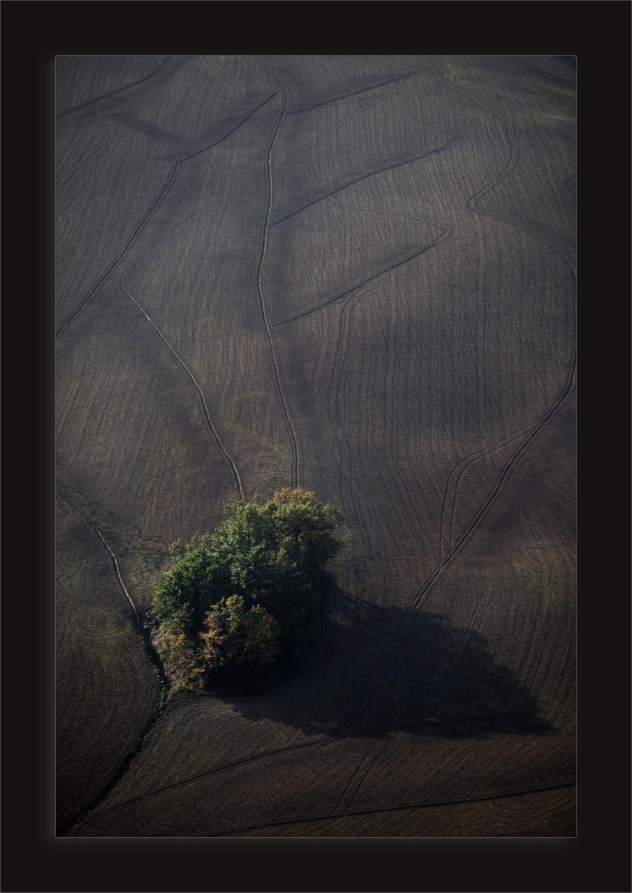 studio-fotografico-parma-terra2